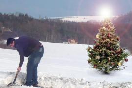 naturblau-Weihnachtsbaum